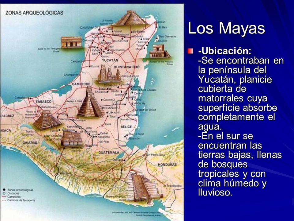 Los Mayas Los Mayas -Ubicación: -Se encontraban en la península del Yucatán, planicie cubierta de matorrales cuya superficie absorbe completamente el agua.