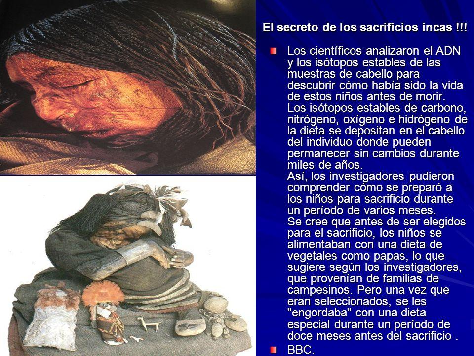 El secreto de los sacrificios incas !!! Los científicos analizaron el ADN y los isótopos estables de las muestras de cabello para descubrir cómo había