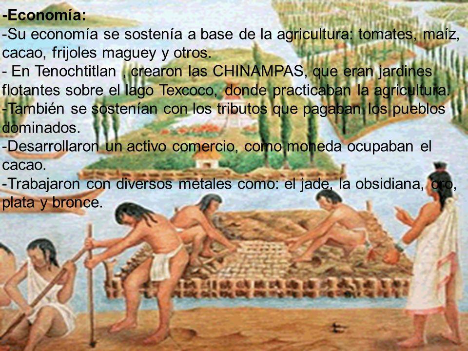 -Economía: -Su economía se sostenía a base de la agricultura: tomates, maíz, cacao, frijoles maguey y otros. - En Tenochtitlan, crearon las CHINAMPAS,