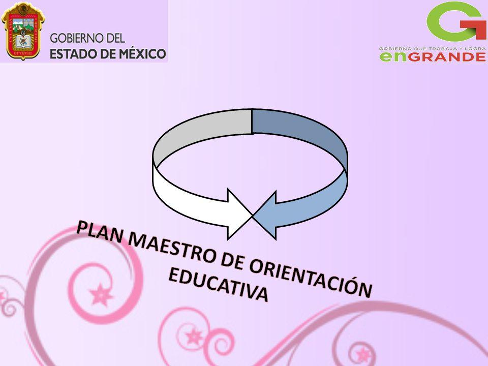 A partir de la Reforma Integral para la Educación Media Superior se opera en el año 2008 El sistema Nacional de Bachillerato, el cual dentro de sus aristas, le da sentido a la Orientación Educativa.