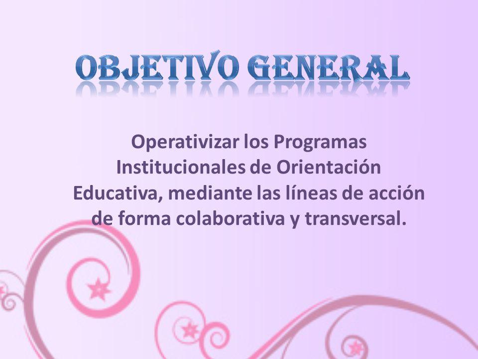 Operativizar los Programas Institucionales de Orientación Educativa, mediante las líneas de acción de forma colaborativa y transversal.