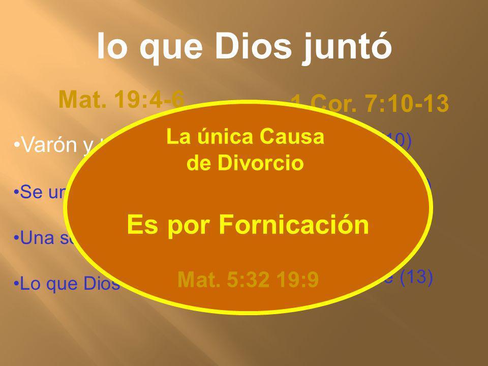 Mat. 19:4-6 1 Cor. 7:10-13 No se separe (10) No la abandone (11) No la abandone(12) No la abandone (13) Varón y Hembra Se unirá a su Mujer Una sola Ca
