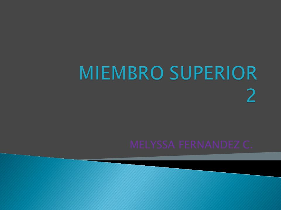 EL MIEMBRO SUPERIOR CONSTA DE 4 SEGMENTOS: 1.