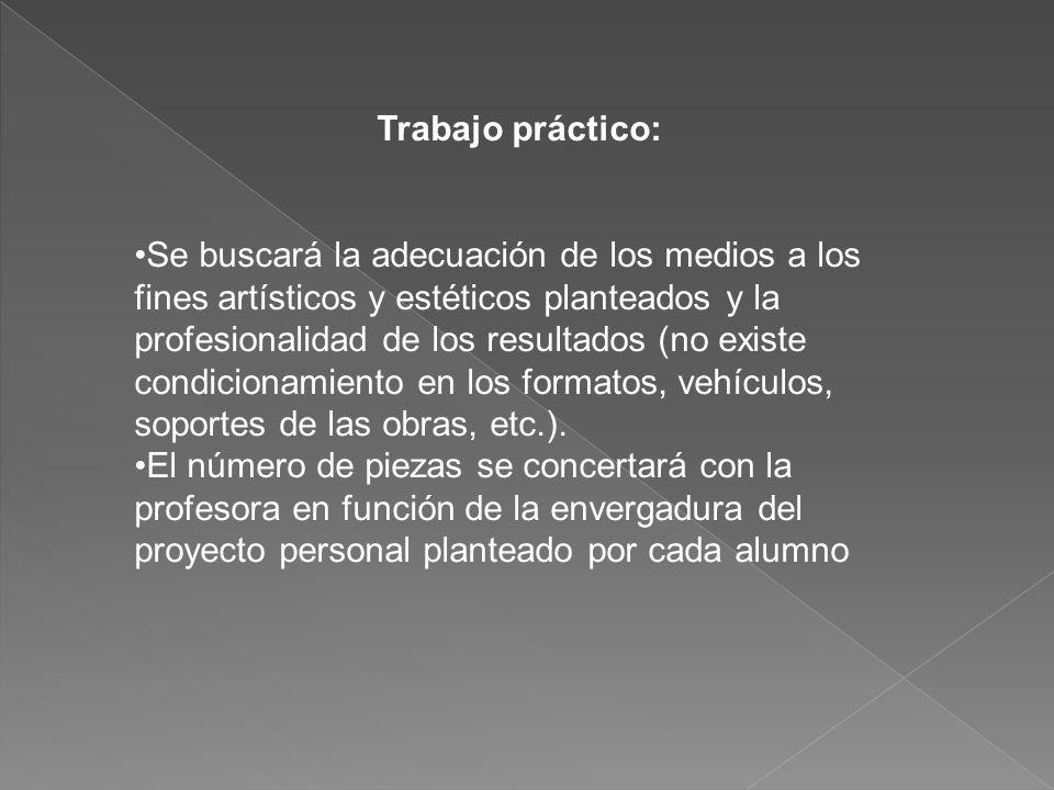 Trabajo práctico: Se buscará la adecuación de los medios a los fines artísticos y estéticos planteados y la profesionalidad de los resultados (no existe condicionamiento en los formatos, vehículos, soportes de las obras, etc.).
