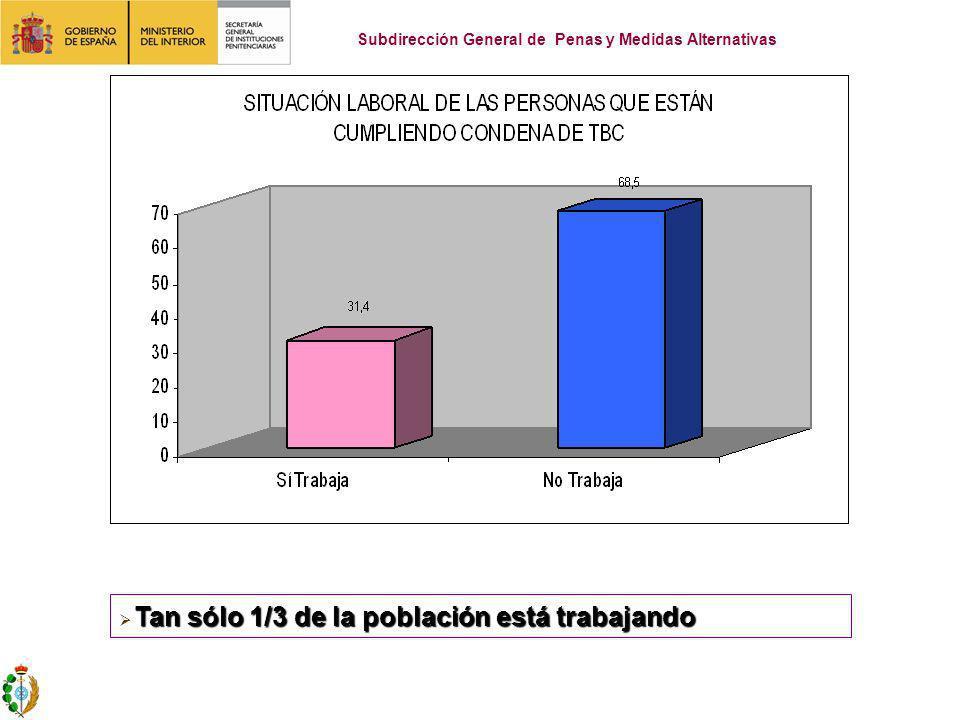 Tan sólo 1/3 de la población está trabajando Subdirección General de Penas y Medidas Alternativas