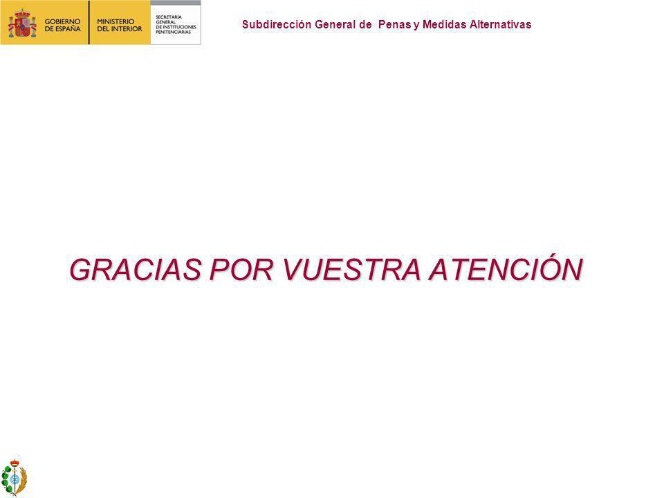 GRACIAS POR VUESTRA ATENCIÓN GRACIAS POR VUESTRA ATENCIÓN Subdirección General de Penas y Medidas Alternativas