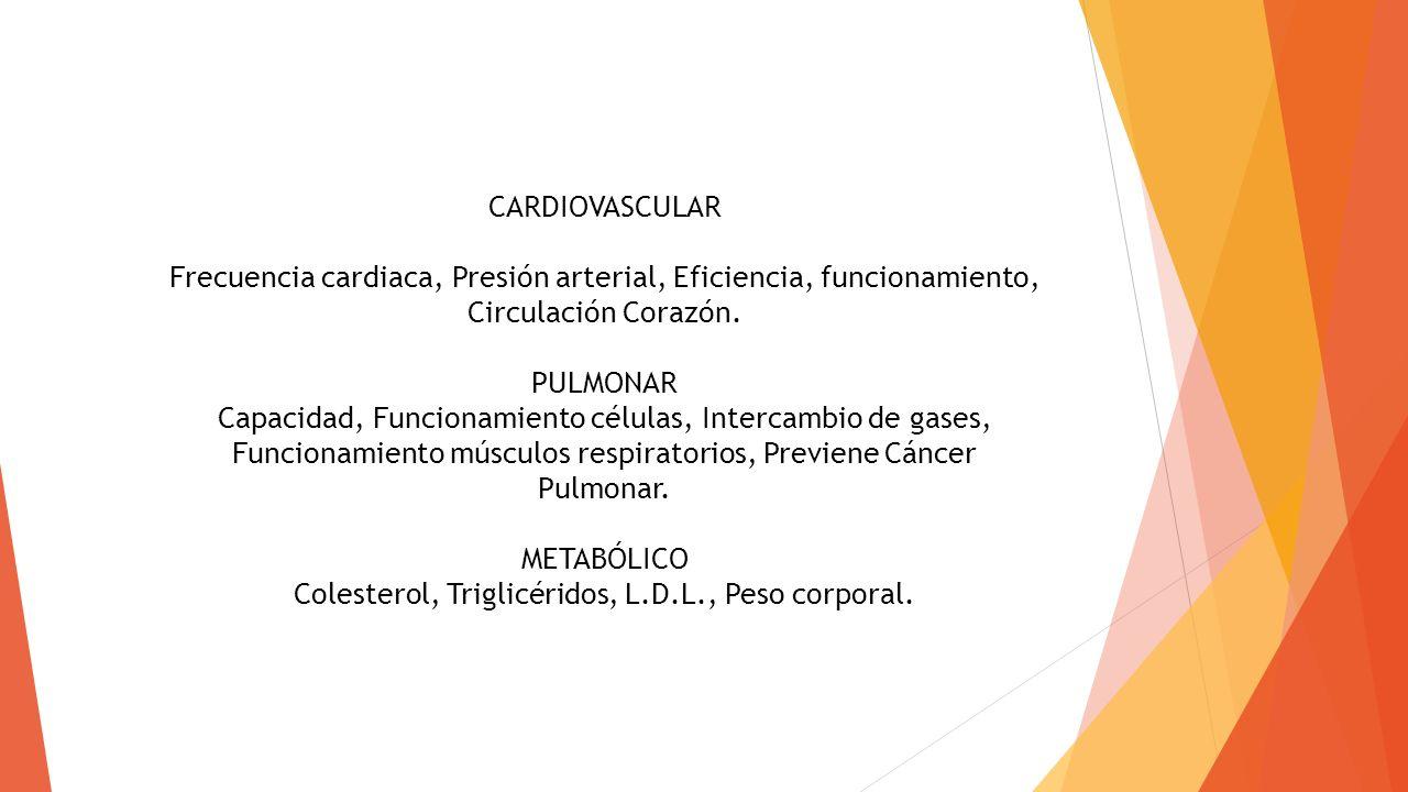 CARDIOVASCULAR Frecuencia cardiaca, Presión arterial, Eficiencia, funcionamiento, Circulación Corazón. PULMONAR Capacidad, Funcionamiento células, Int