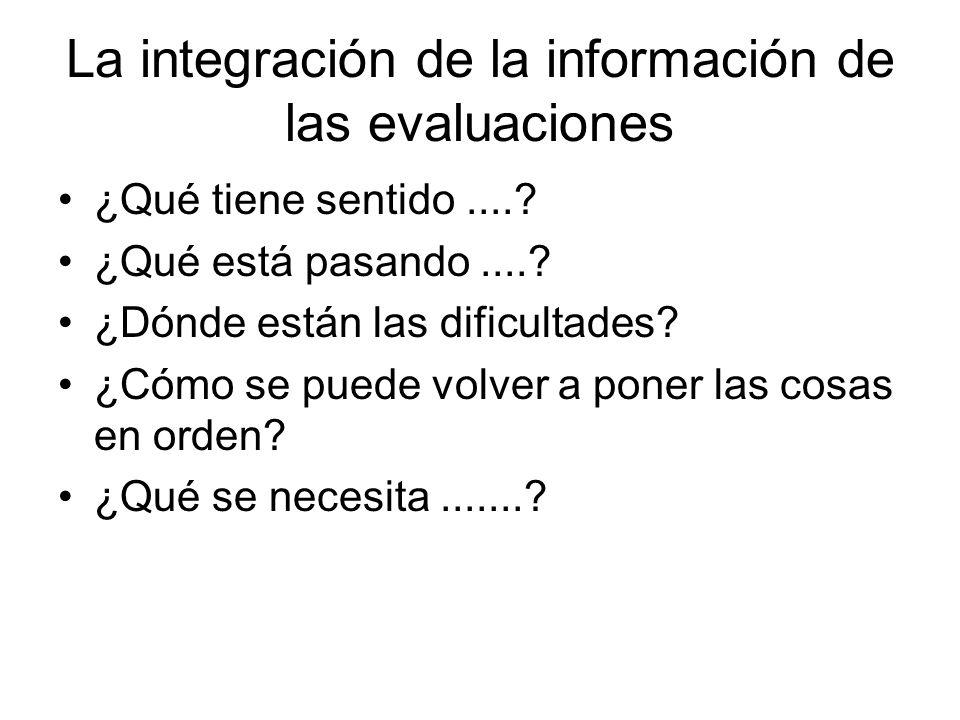La integración de la información de las evaluaciones ¿Qué tiene sentido....? ¿Qué está pasando....? ¿Dónde están las dificultades? ¿Cómo se puede volv
