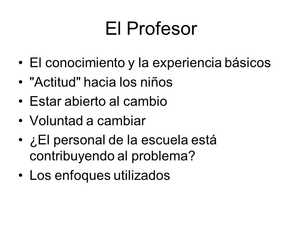 El Profesor El conocimiento y la experiencia básicos