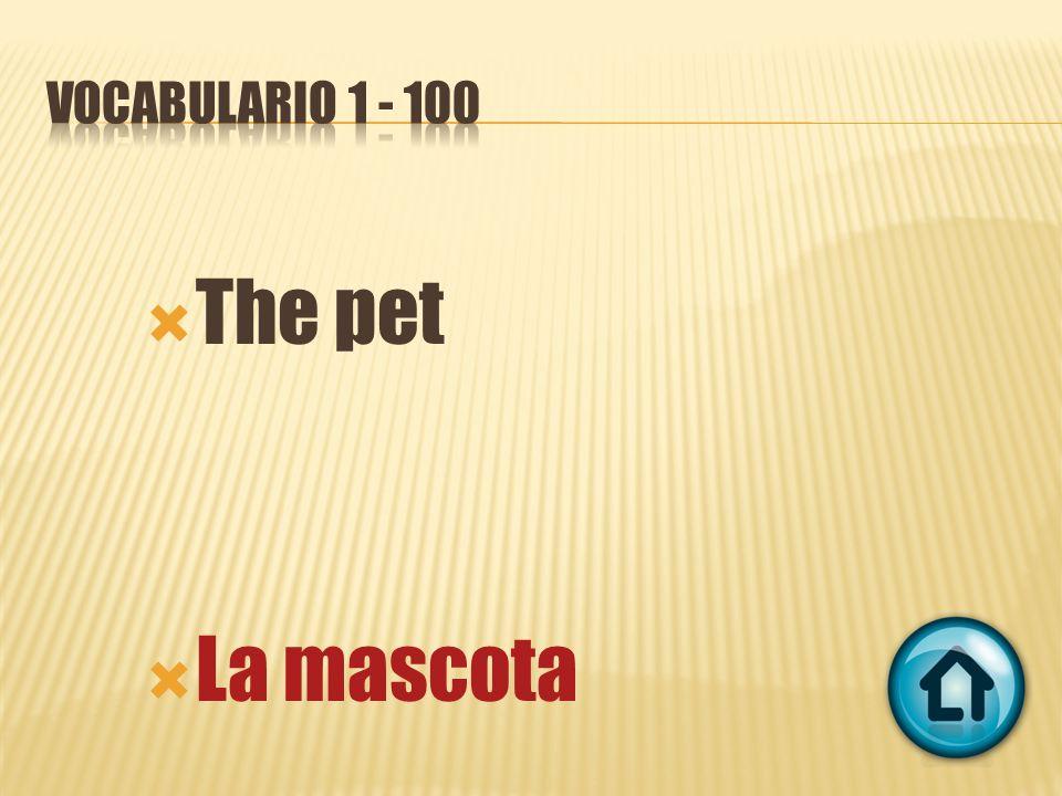 The pet La mascota