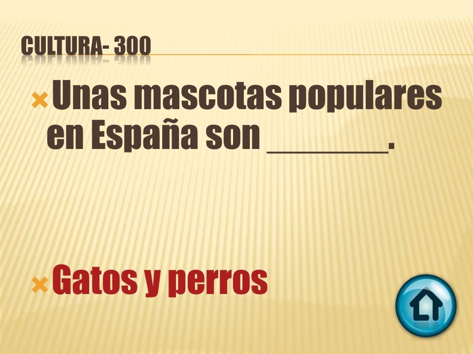 Unas mascotas populares en España son ______. Gatos y perros