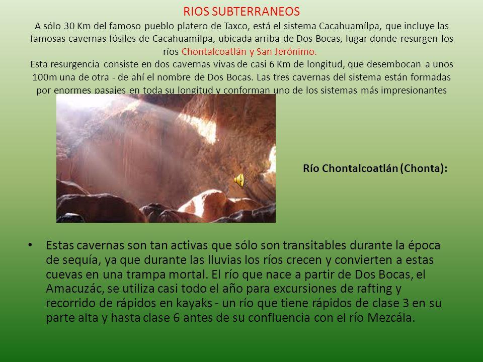 RIOS SUBTERRANEOS A sólo 30 Km del famoso pueblo platero de Taxco, está el sistema Cacahuamílpa, que incluye las famosas cavernas fósiles de Cacahuami