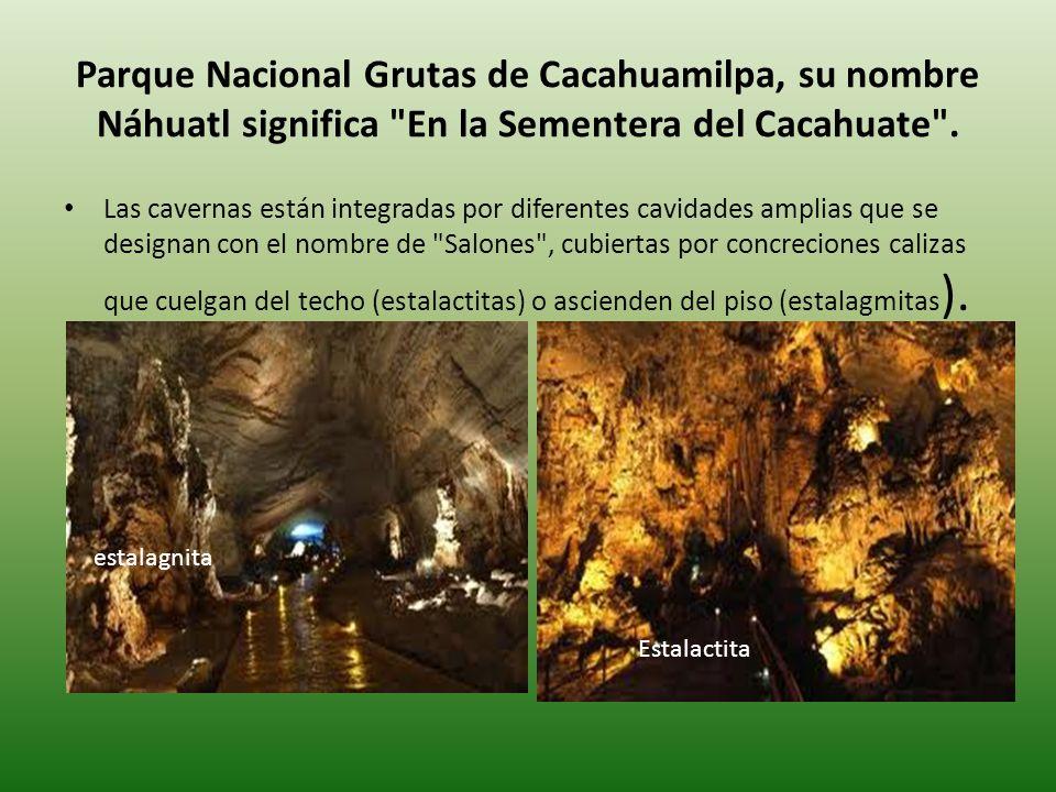 Parque Nacional Grutas de Cacahuamilpa, su nombre Náhuatl significa