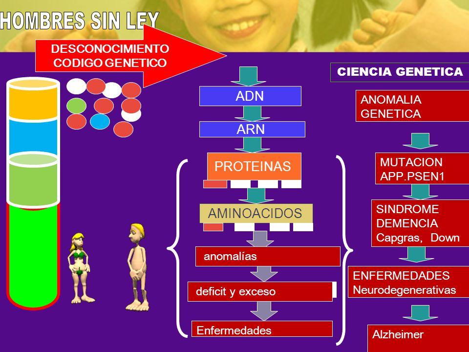 ADN ARN PROTEINAS AMINOACIDOS CIENCIA GENETICA MUTACION APP.PSEN1 No Deficiencias ni exseso SINDROME DEMENCIA Capgras, Down ANOMALIA GENETICA deficit