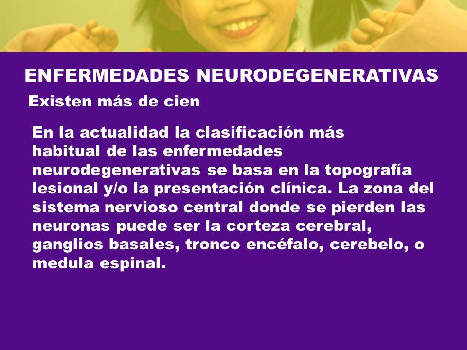 ENFERMEDADES NEURODEGENERATIVAS Existen más de cien En la actualidad la clasificación más habitual de las enfermedades neurodegenerativas se basa en l