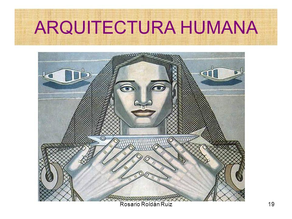 Rosario Roldán Ruiz19 ARQUITECTURA HUMANA