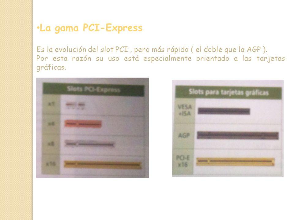 La gama PCI-Express Es la evolución del slot PCI, pero más rápido ( el doble que la AGP ).