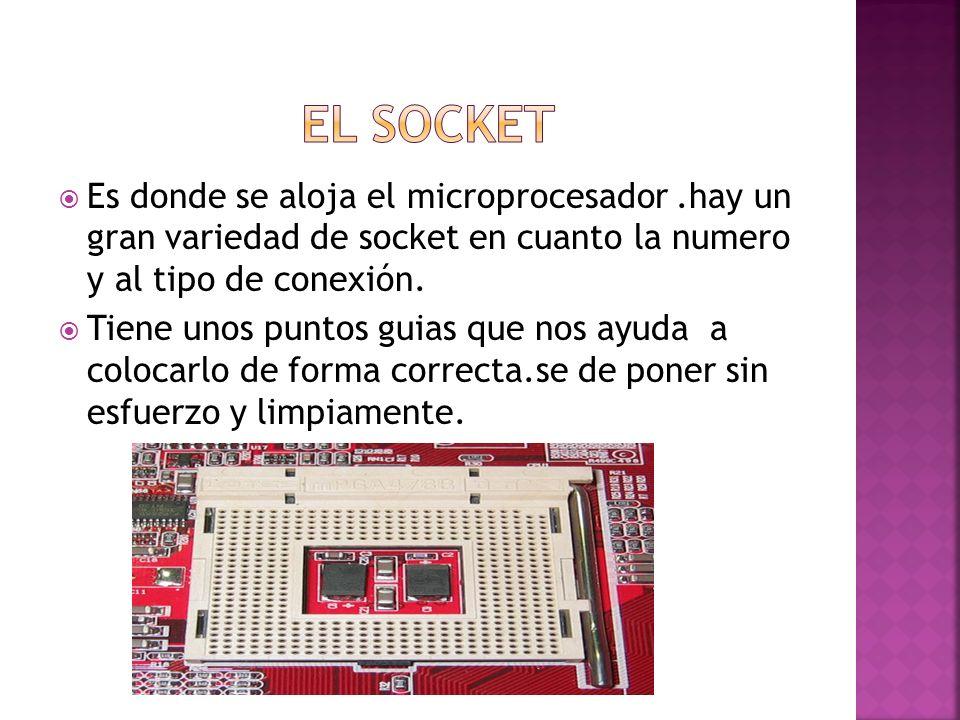 Es donde se aloja el microprocesador.hay un gran variedad de socket en cuanto la numero y al tipo de conexión. Tiene unos puntos guias que nos ayuda a