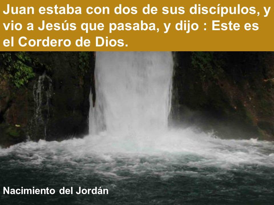 Rio Jordán Después de Navidad el Jordán, con Juan el Bautista y Jesús, es el punto de partida