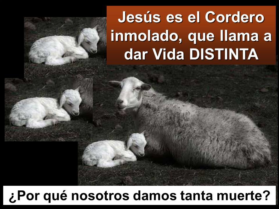Juan estaba con dos de sus discípulos, y vio a Jesús que pasaba, y dijo : Este es el Cordero de Dios. Nacimiento del Jordán