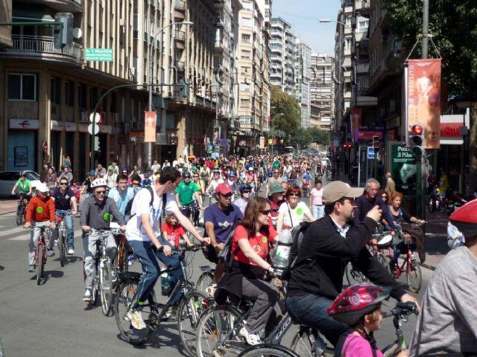 En Murcia en bici somos casi 300 socios, de diferentes estatus y edades, aunque la mayoría somos adultos; a veces nos asociamos en familia, grupos de amigos, o de forma individual.