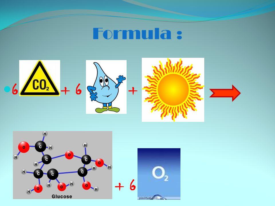 Formula : 6 + 6 + + 6