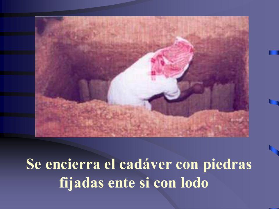Querido Hermano---Musulmanes: Obra para aquella tumba mientras tengas alma en tu cuerpo--- puedes arrepentirte y concertar entre Allah y tu persona---