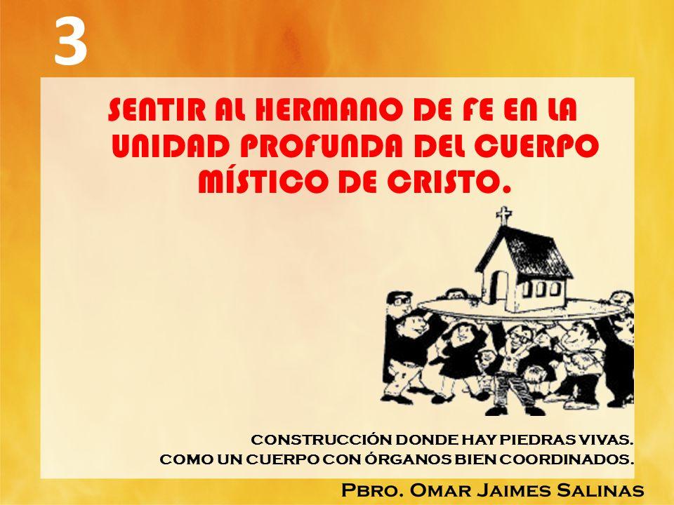 3 SENTIR AL HERMANO DE FE EN LA UNIDAD PROFUNDA DEL CUERPO MÍSTICO DE CRISTO. CONSTRUCCIÓN DONDE HAY PIEDRAS VIVAS. COMO UN CUERPO CON ÓRGANOS BIEN CO