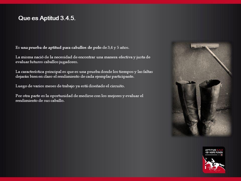 Que es Aptitud 3.4.5. Es una prueba de aptitud para caballos de polo de 3,4 y 5 años. La misma nació de la necesidad de encontrar una manera efectiva
