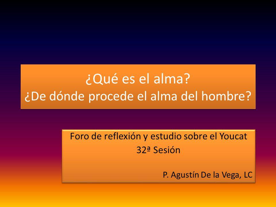 ¿Qué es el alma? ¿De dónde procede el alma del hombre? Foro de reflexión y estudio sobre el Youcat 32ª Sesión P. Agustín De la Vega, LC Foro de reflex