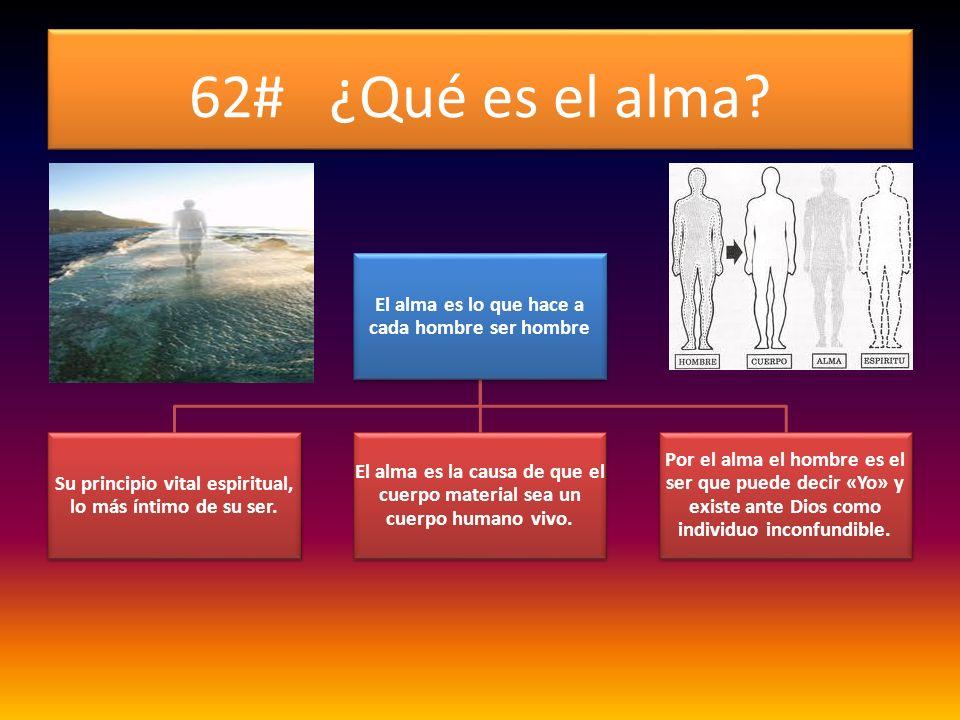 62# ¿Qué es el alma? El alma es lo que hace a cada hombre ser hombre Su principio vital espiritual, lo más íntimo de su ser. El alma es la causa de qu