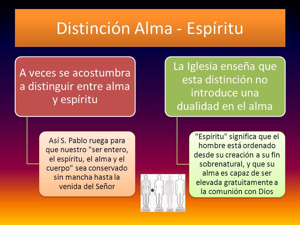 Distinción Alma - Espíritu A veces se acostumbra a distinguir entre alma y espíritu Así S. Pablo ruega para que nuestro
