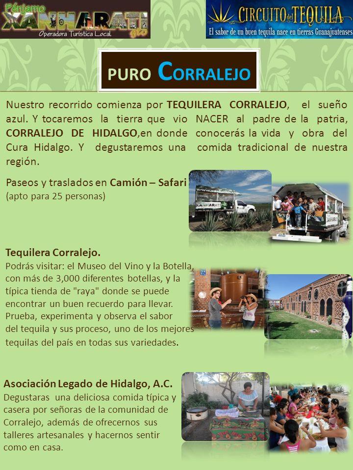 PURO C ORRALEJO Paseos y traslados en Camión – Safari (apto para 25 personas) Tequilera Corralejo.