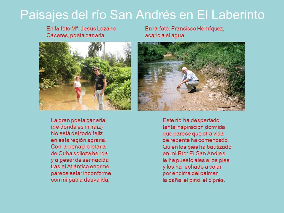 Paisajes del río San Andrés en El Laberinto Este río ha despertado tanta inspiración dormida que parece que otra vida de repente ha comenzado.