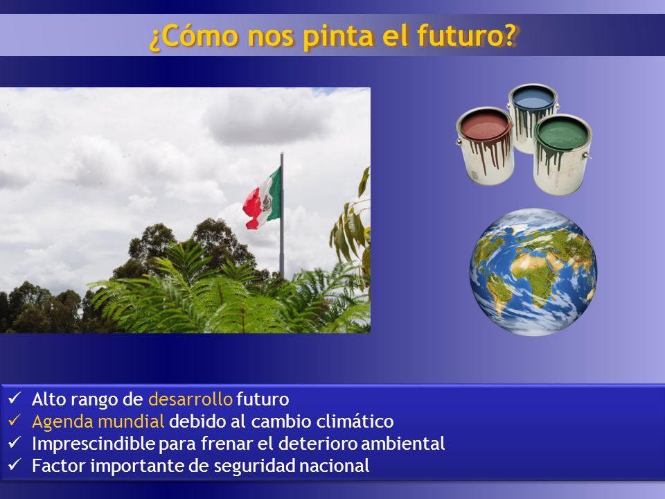 11 ¿Cómo nos pinta el futuro? Alto rango de desarrollo futuro Agenda mundial debido al cambio climático Imprescindible para frenar el deterioro ambien