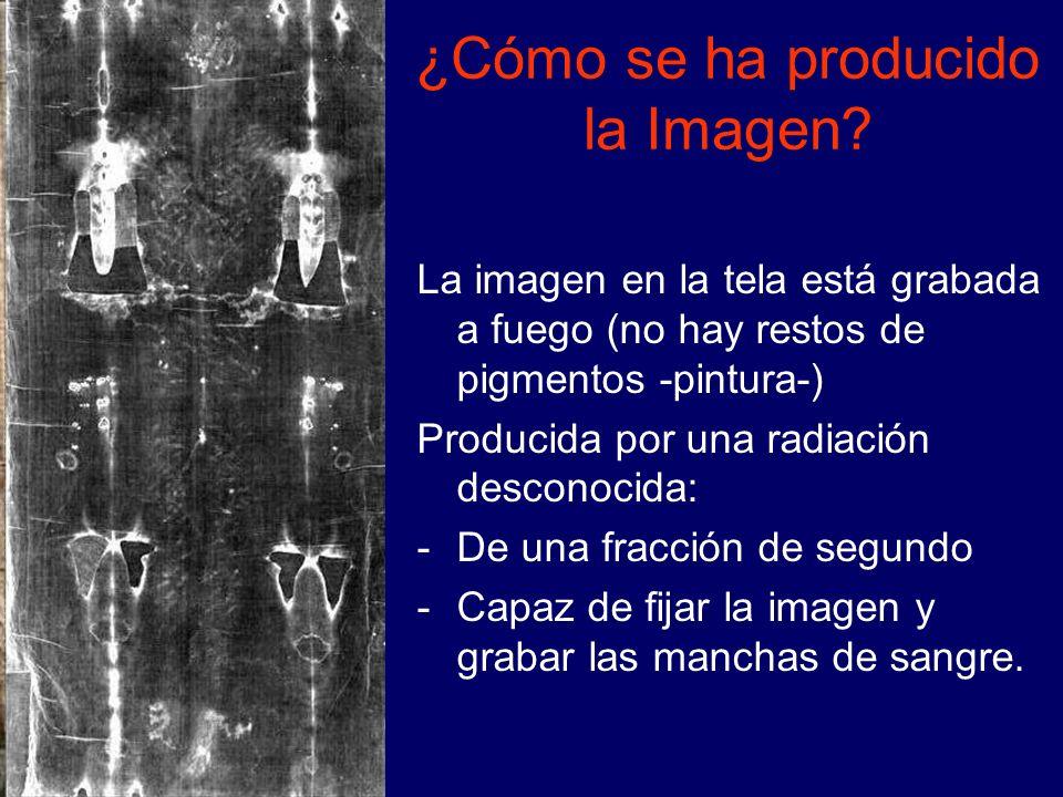 ¿Cómo se ha producido la Imagen? La imagen en la tela está grabada a fuego (no hay restos de pigmentos -pintura-) Producida por una radiación desconoc