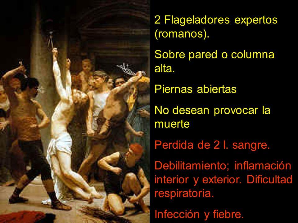 2 Flageladores expertos (romanos). Sobre pared o columna alta. Piernas abiertas No desean provocar la muerte Perdida de 2 l. sangre. Debilitamiento; i