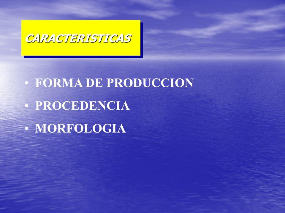 FORMA DE PRODUCCION PROCEDENCIA MORFOLOGIA CARACTERISTICASCARACTERISTICAS