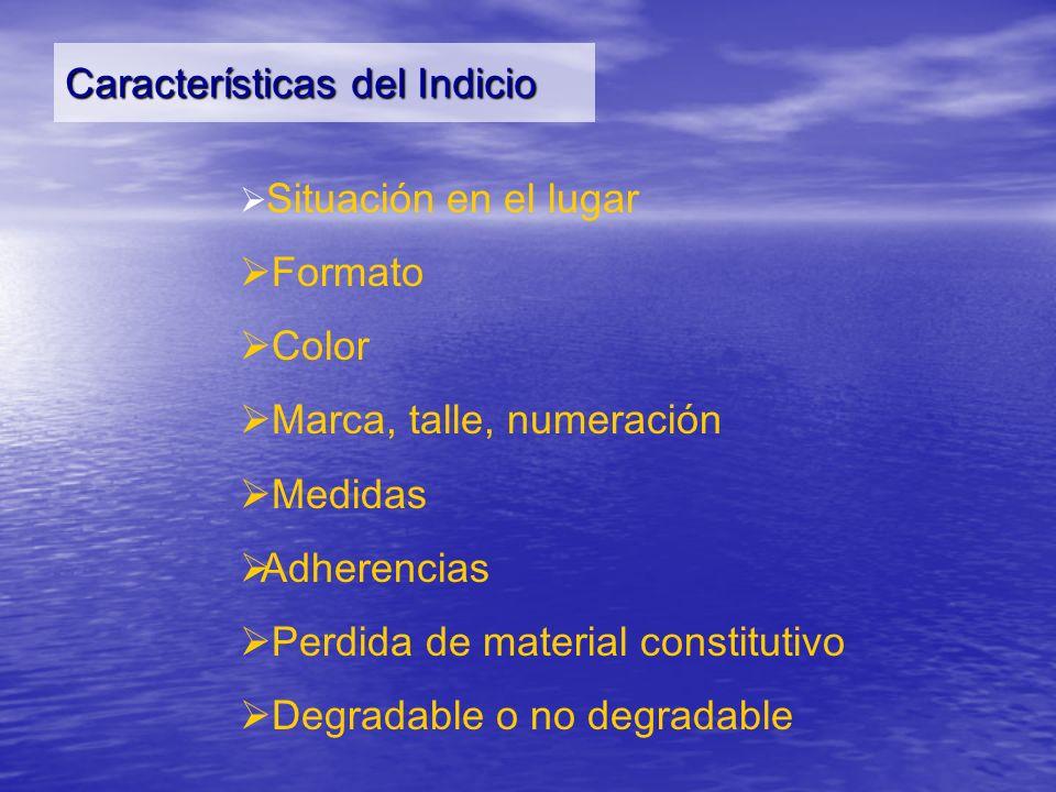 Características del Indicio Situación en el lugar Formato Color Marca, talle, numeración Medidas Adherencias Perdida de material constitutivo Degradab