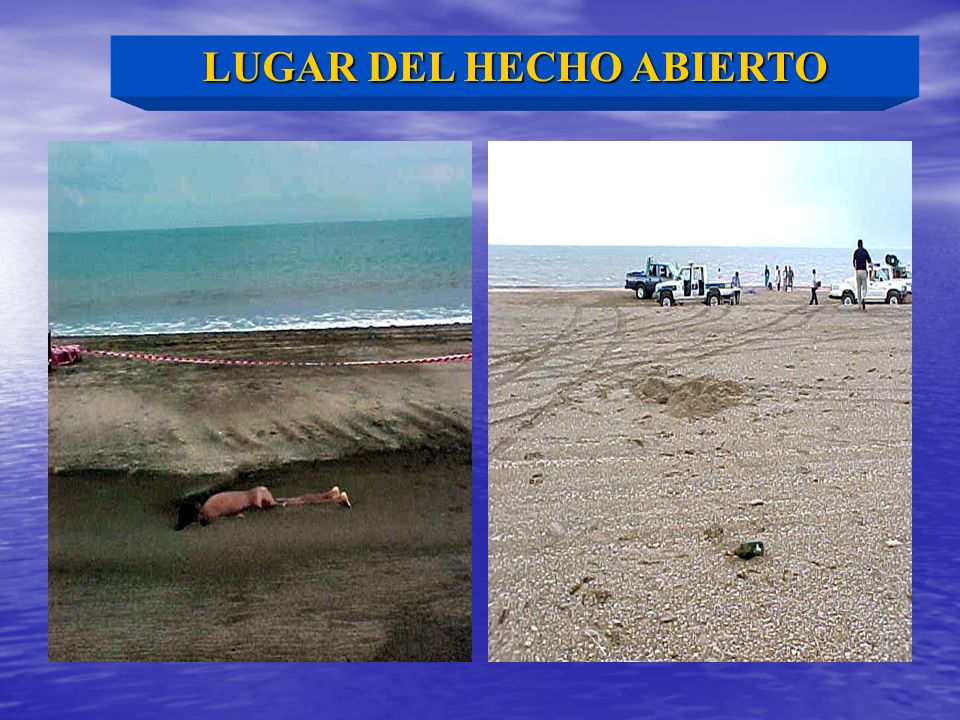 LUGAR DEL HECHO ABIERTO