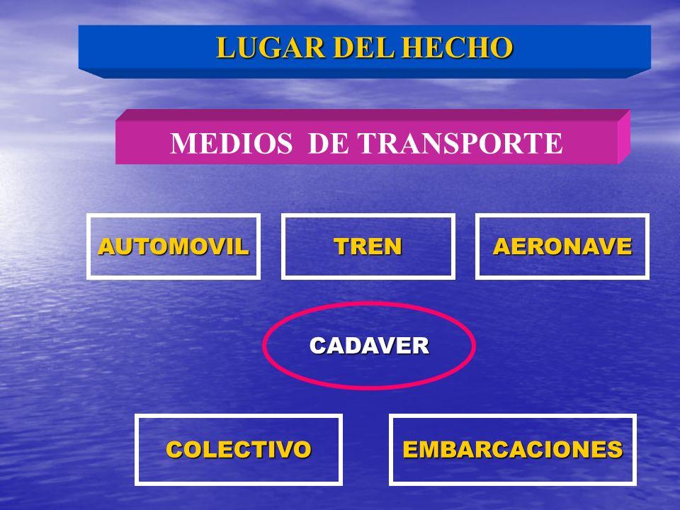MEDIOS DE TRANSPORTE AUTOMOVILTRENAERONAVE CADAVER COLECTIVOEMBARCACIONES LUGAR DEL HECHO