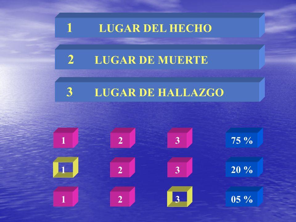 1 LUGAR DEL HECHO 2 LUGAR DE MUERTE 3 LUGAR DE HALLAZGO 1 2 3 2 3 3 1 2 1 75 % 20 % 05 %