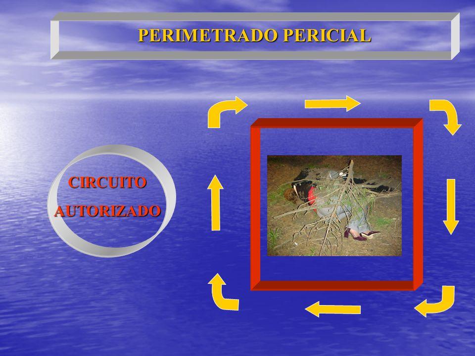 CIRCUITOAUTORIZADO PERIMETRADO PERICIAL