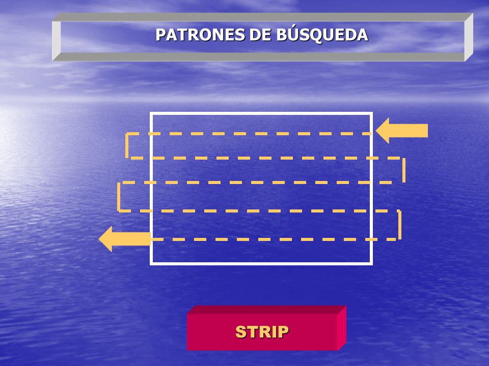 PATRONES DE BÚSQUEDA STRIP