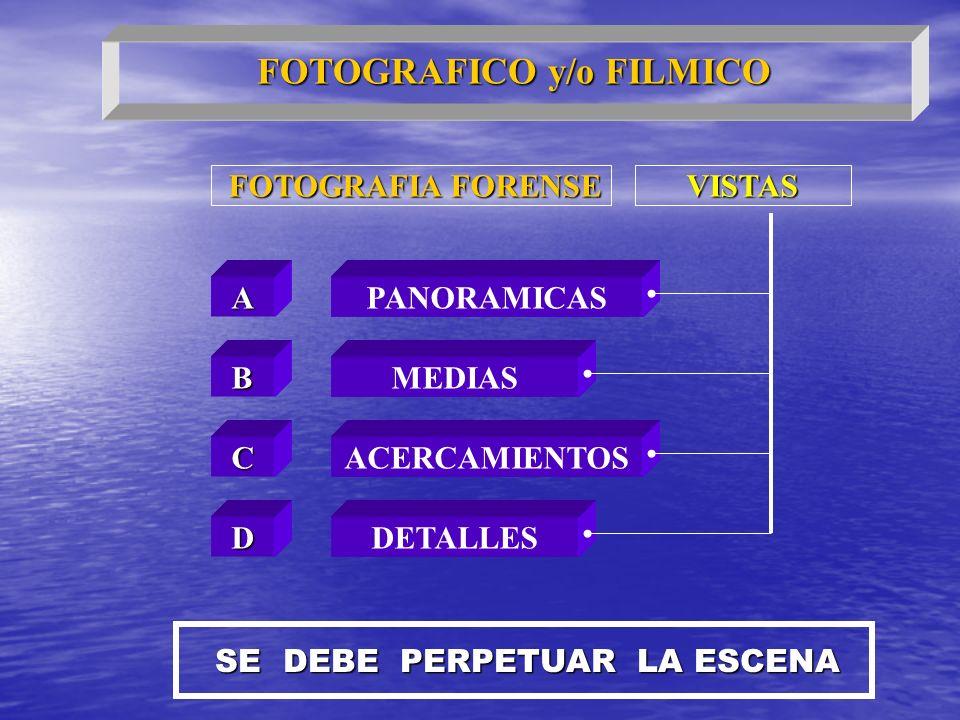 FOTOGRAFIA FORENSE FOTOGRAFIA FORENSE A D C B PANORAMICAS VISTAS MEDIAS ACERCAMIENTOS DETALLES SE DEBE PERPETUAR LA ESCENA FOTOGRAFICO y/o FILMICO