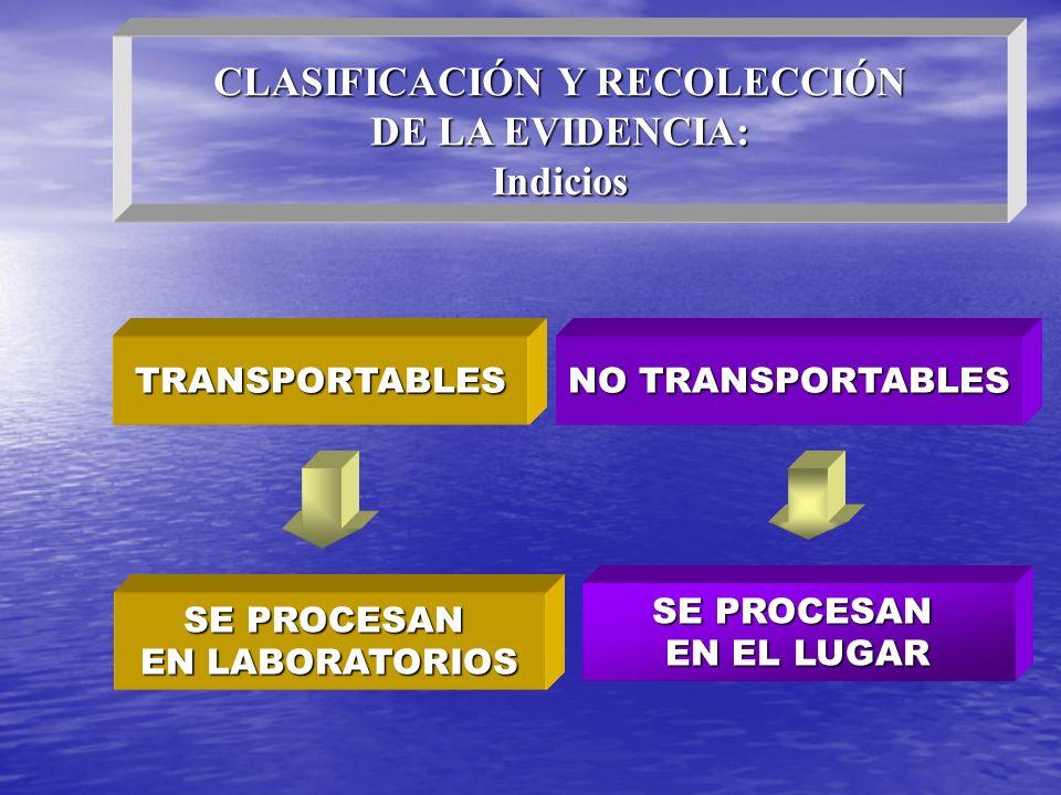 TRANSPORTABLES NO TRANSPORTABLES SE PROCESAN EN EL LUGAR SE PROCESAN EN LABORATORIOS CLASIFICACIÓN Y RECOLECCIÓN DE LA EVIDENCIA: Indicios