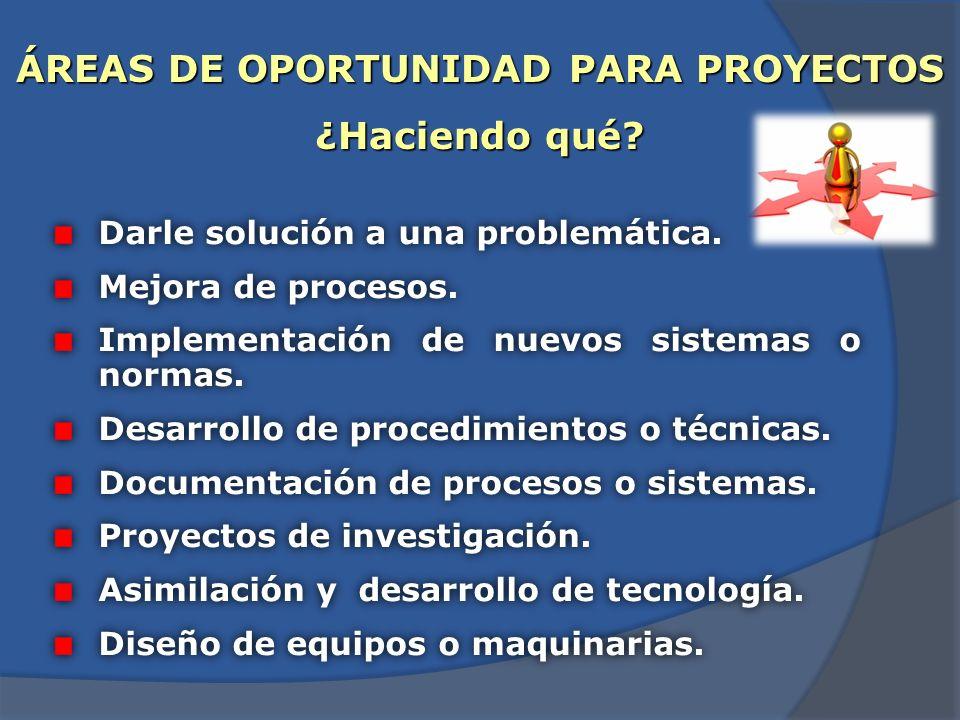 ÁREAS DE DESARROLLO ¿En dónde se puede realizar? Sector social y productivo (organizaciones públicas y privadas). Desarrollo tecnológico empresarial.