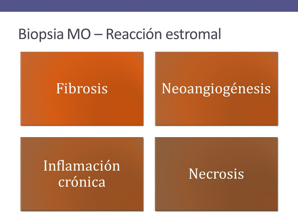 Biopsia MO – Reacción estromal FibrosisNeoangiogénesis Inflamación crónica Necrosis