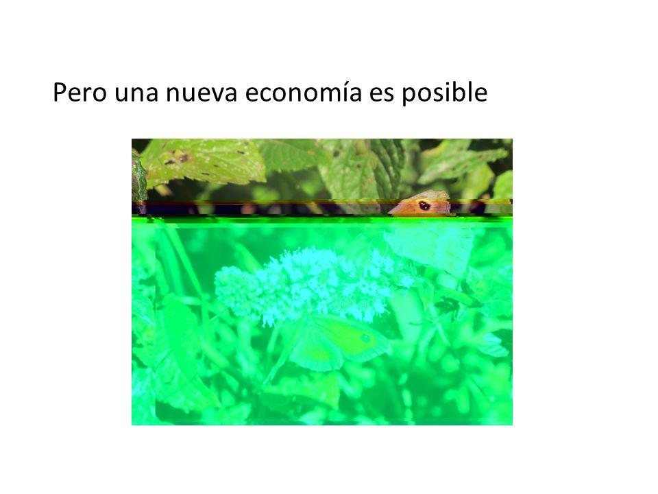 Pero una nueva economía es posible