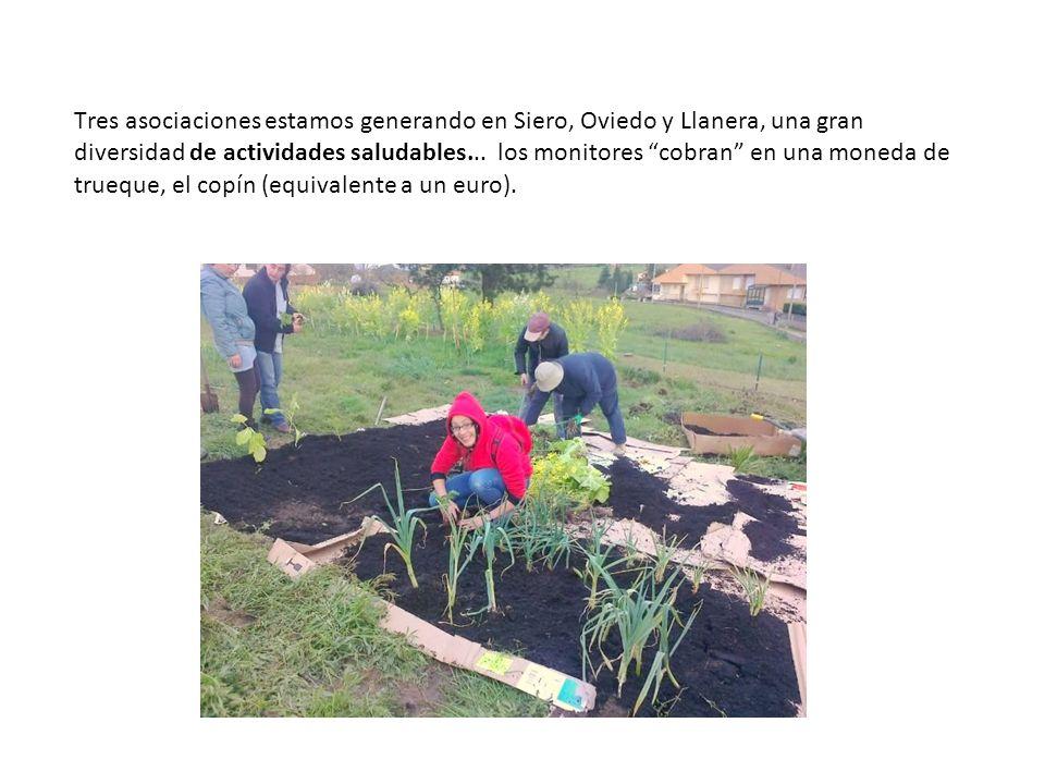 Tres asociaciones estamos generando en Siero, Oviedo y Llanera, una gran diversidad de actividades saludables...
